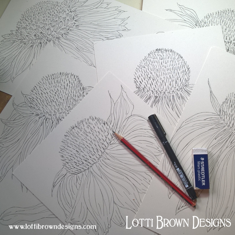 Starting my coneflower drawings in pen