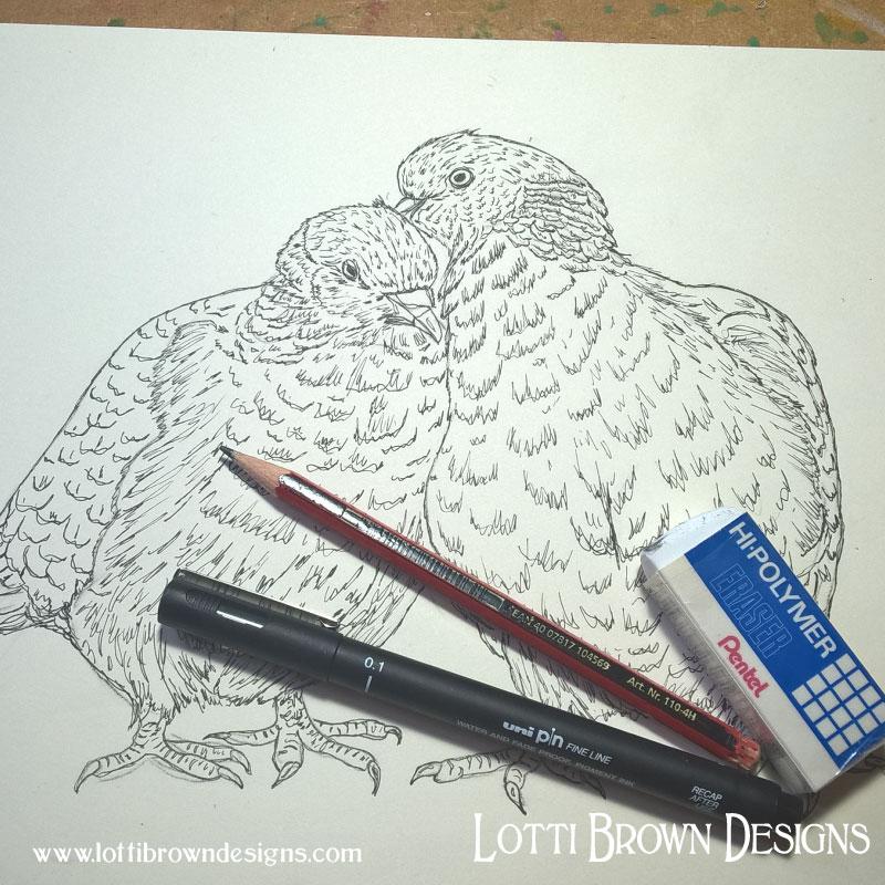 Woodpigeons line drawing
