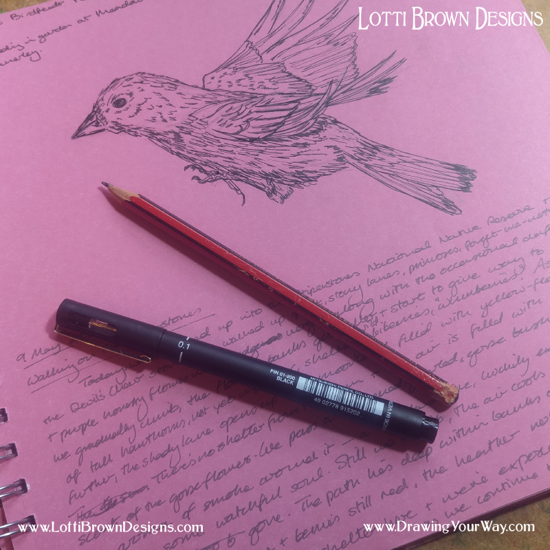 Draw and write in a sketchbook, scrapbook, or scraps of paper…