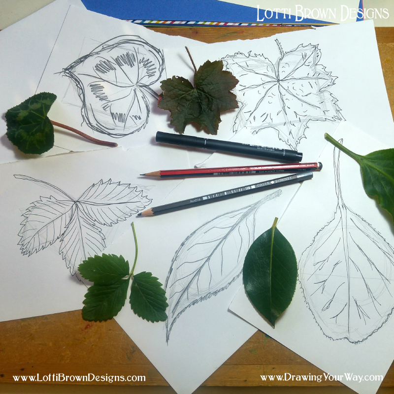 Learning how to draw anything… starting with some simple leaves to learn how to think about basic shapes of things