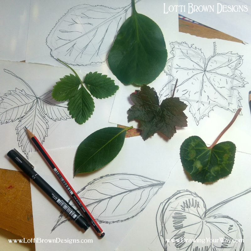 Learning how to draw anything in simple steps - studying how to draw a leaf step by step can be applied to any subject matter you want… it might just be a bit more complex!