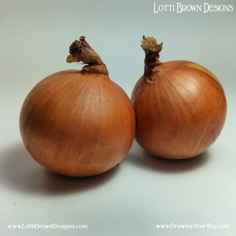 The stripes on the skin of the onion help us to know about (and draw) its rounded form. Click on the image to download it for your own drawing practice (opens in a new window).
