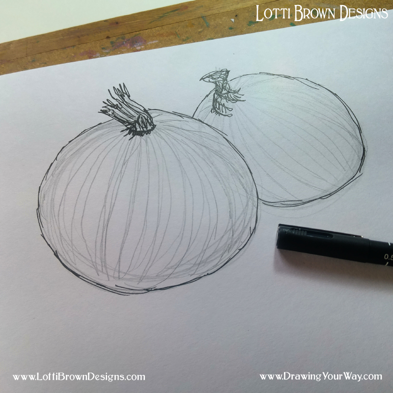 After inking in the main outline with my drawing pen, I add pencilled contour lines following the stripes on the onions skin to help show the rounded form of the onions