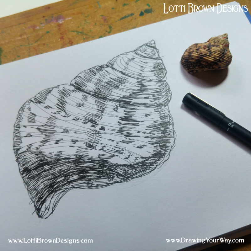 My shell drawing. Lots of lines!