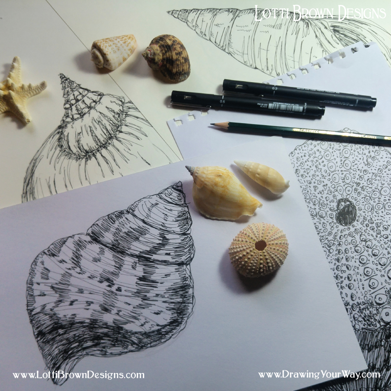 Some of my own shell drawings - trying out different ways of making marks to show texture, detail, shape and form.