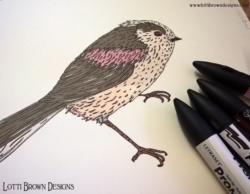 One of my long-tailed tits drawings created with black fineliner drawing pen and promarkers