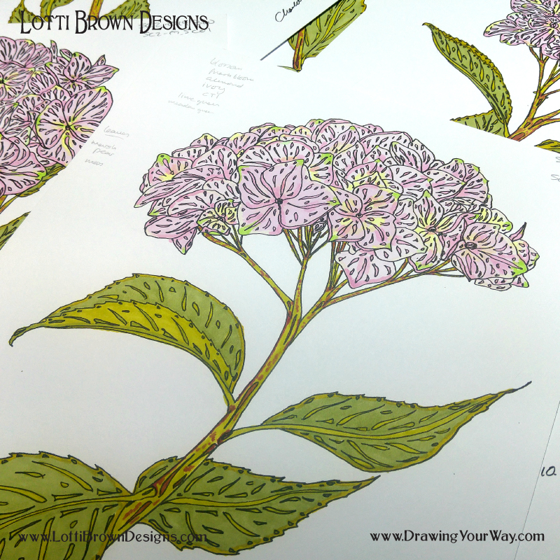 Putting a personal spin on a floral drawing. Pink hydrangeas in black drawing pen and Promarker markers.