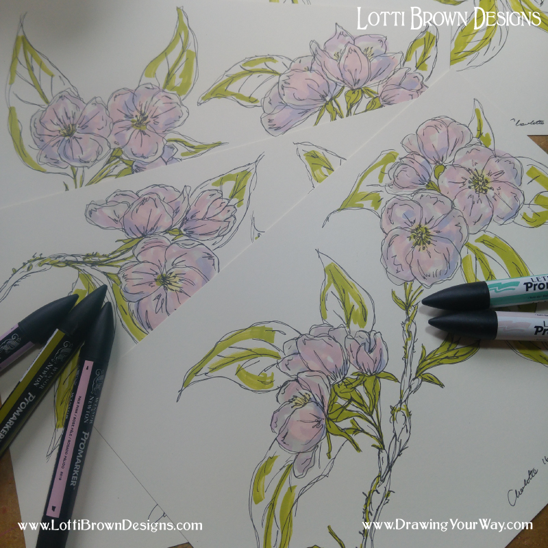 Drawing the apple blossoms