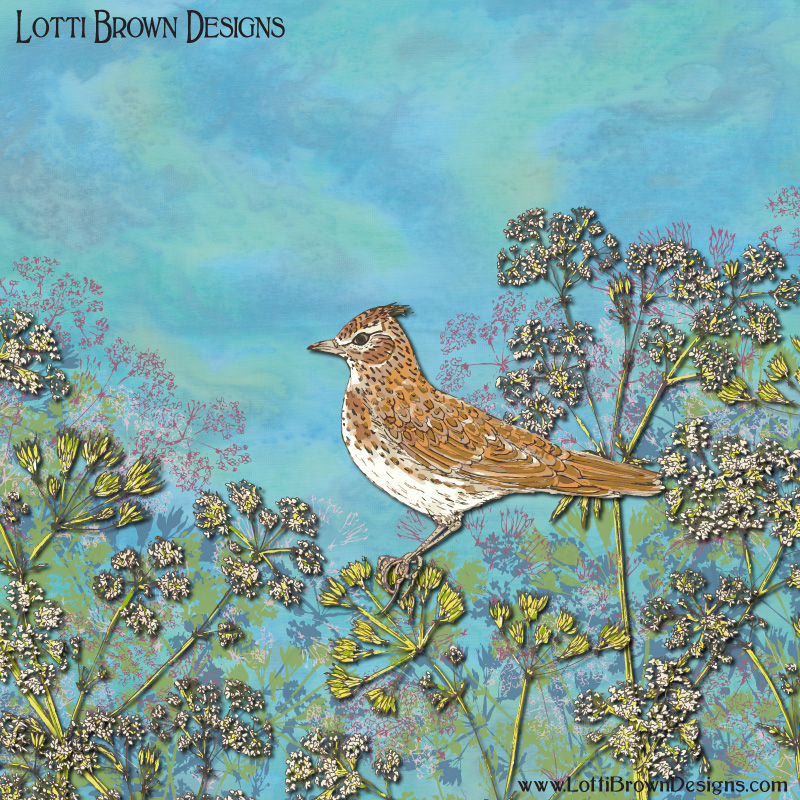 'Summer Skylark' bird art by Lotti Brown