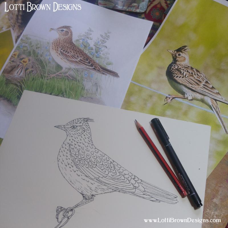 Skylark in drawing pen