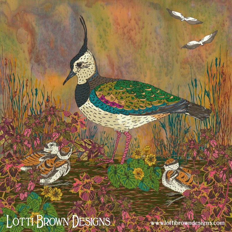 'Lapwing Revival' artwork by Lotti Brown