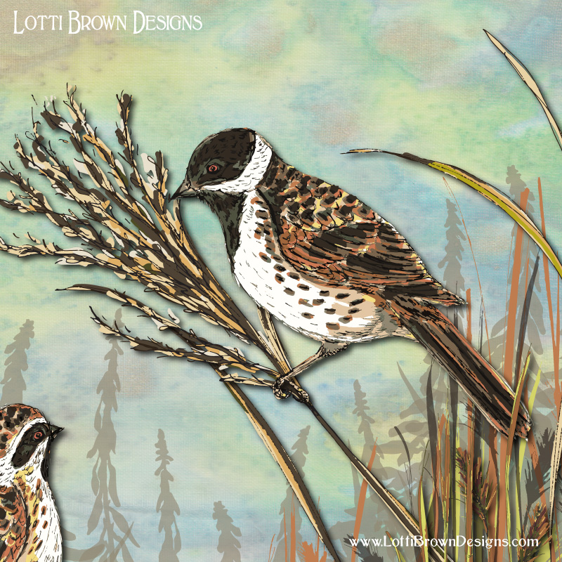 Showing detail from the Reed Bunting artwork