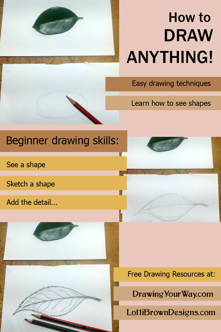 Learn how to draw anything by seeing simple shapes