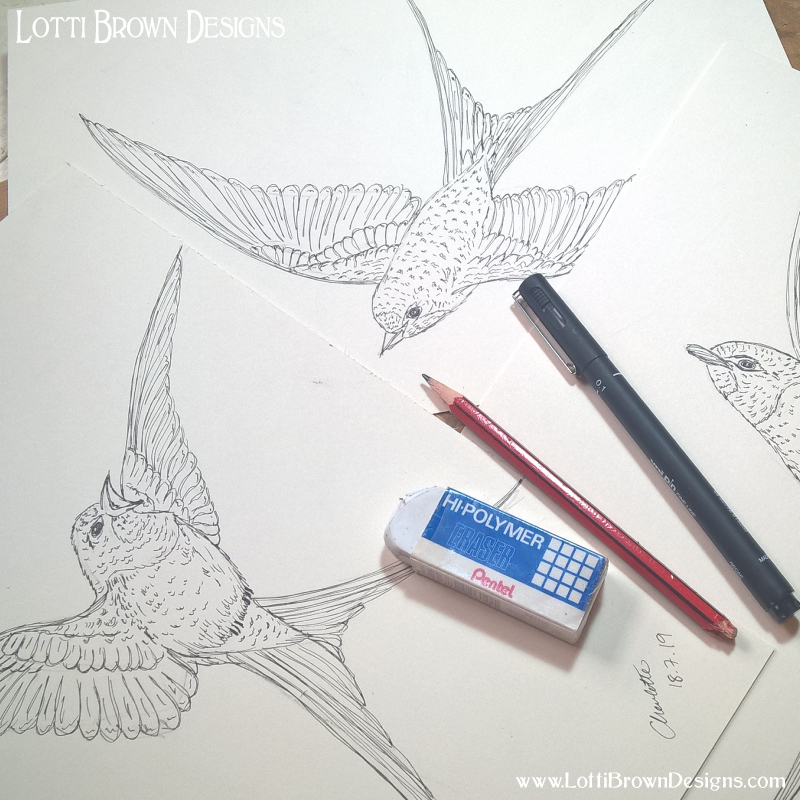 Starting to draw the swallows