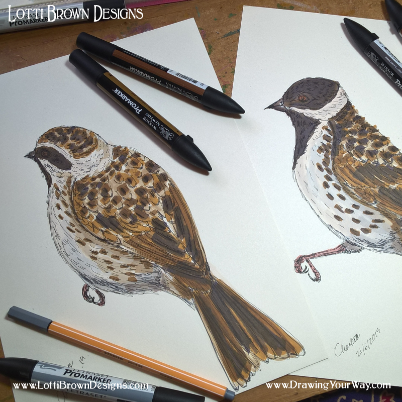 Reedbuntings Drawings - click to go behind the scenes