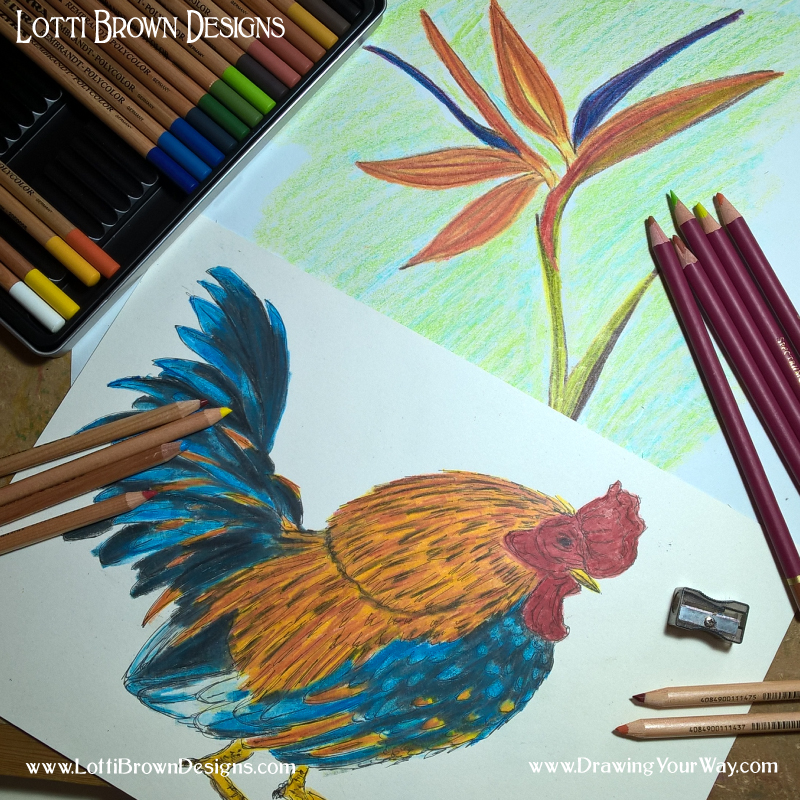 Coloured pencil drawings