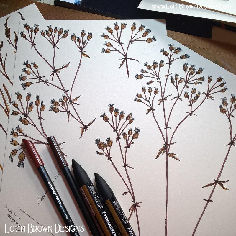 More foliage drawings
