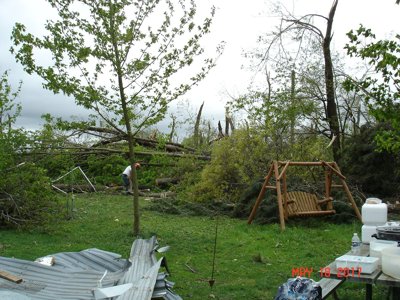 After much sawing and hauling debris from the yard.