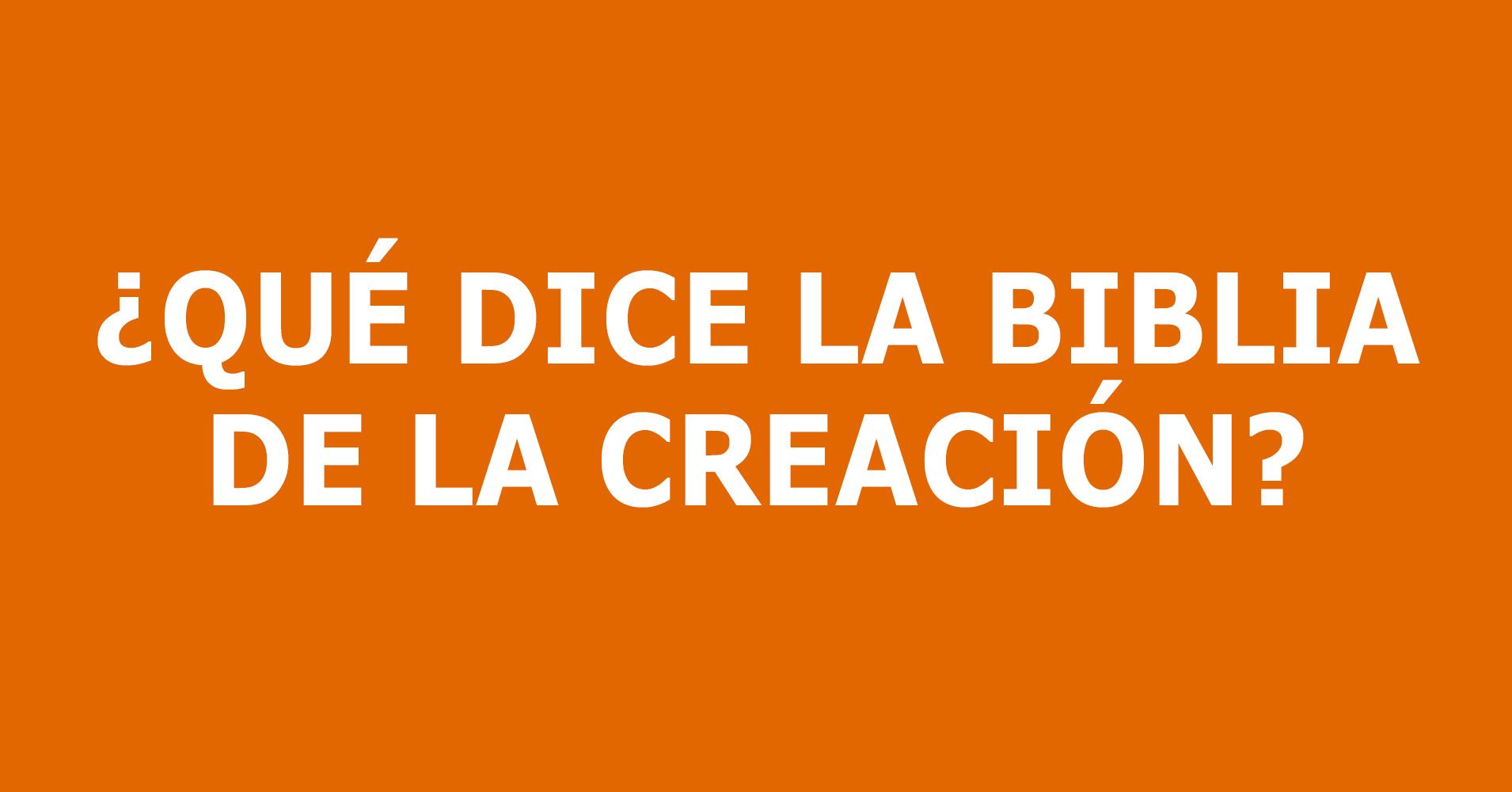 Es-Creation.jpg