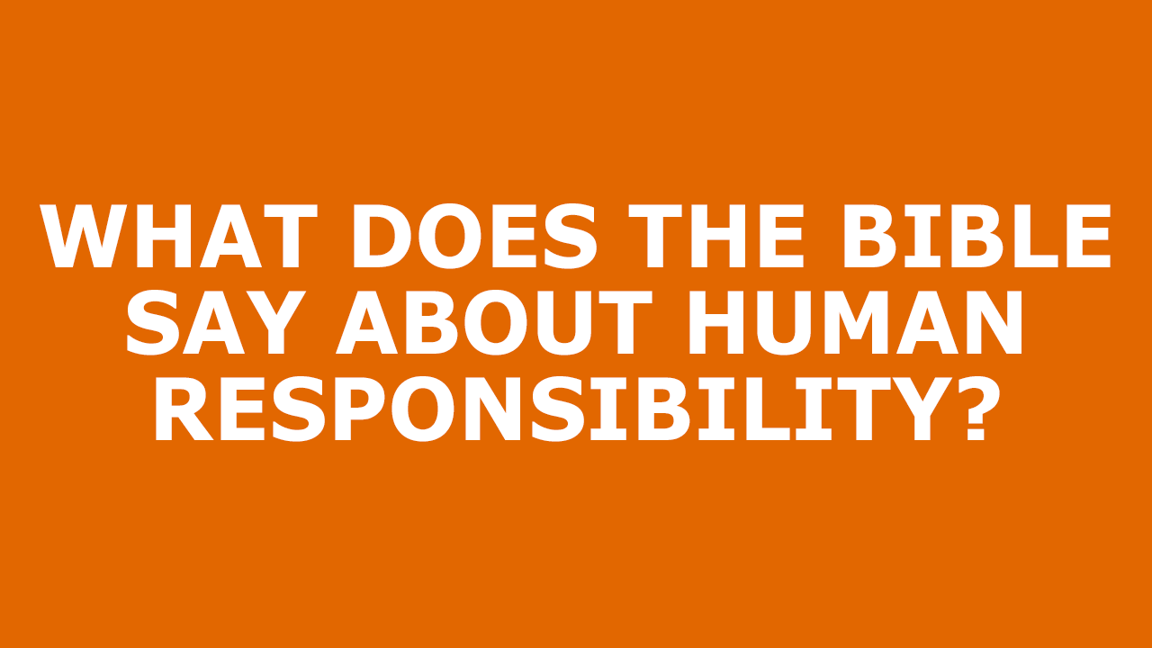Human-Responsibility.png