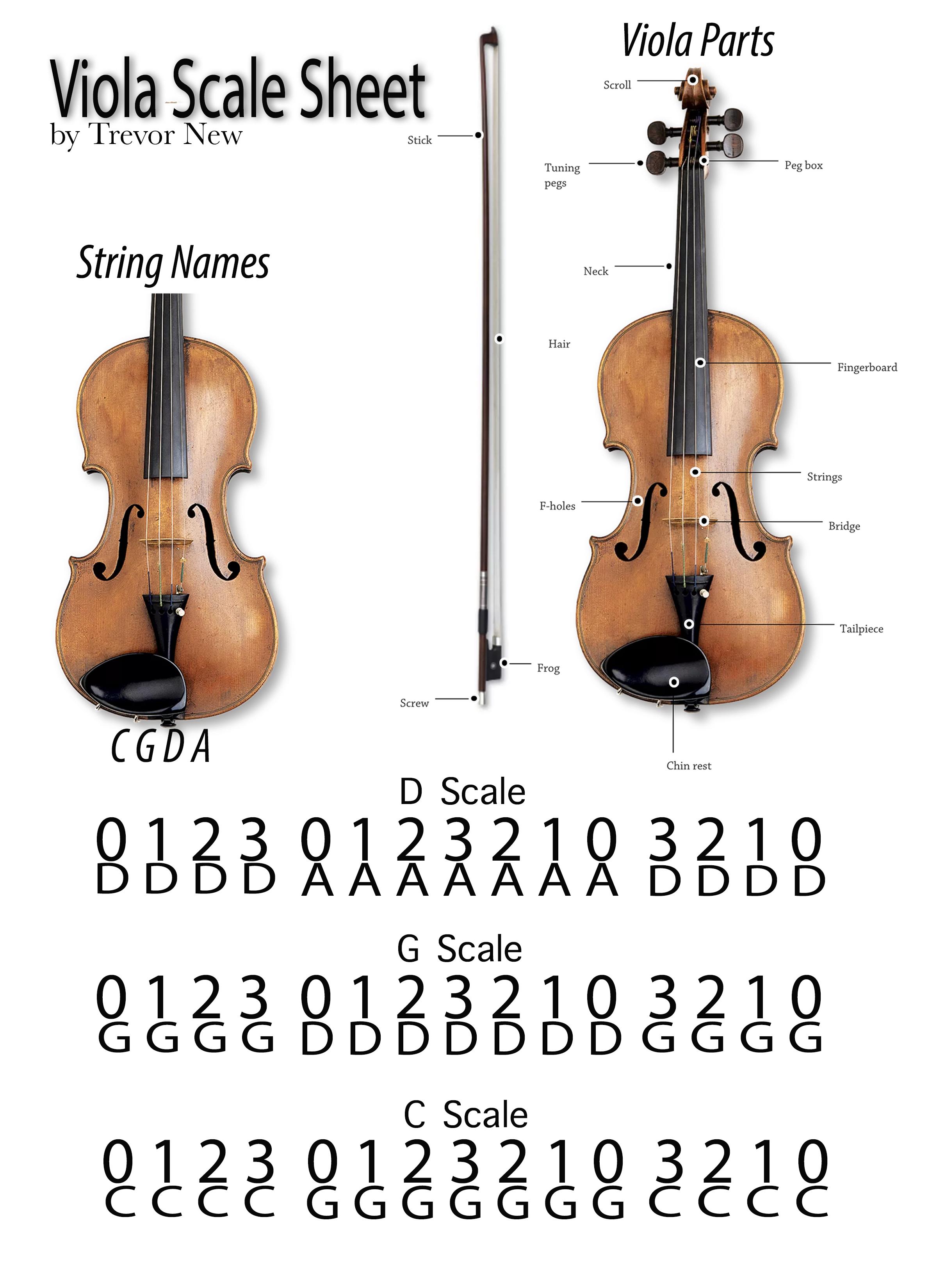 Viola Scale Sheet v1 .png