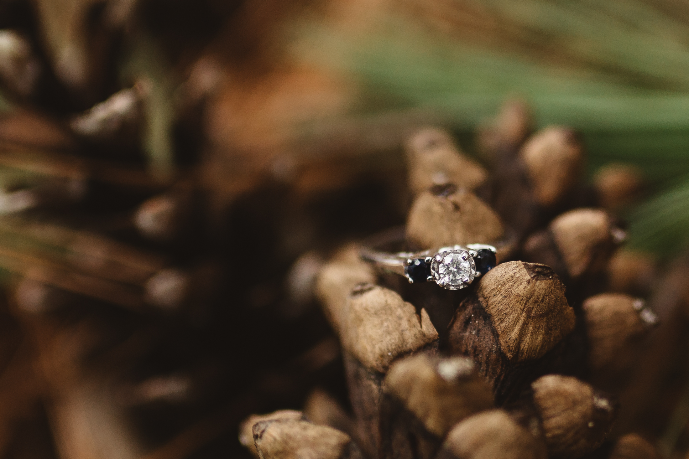 minneapolis-engagement-forest-ring-shot