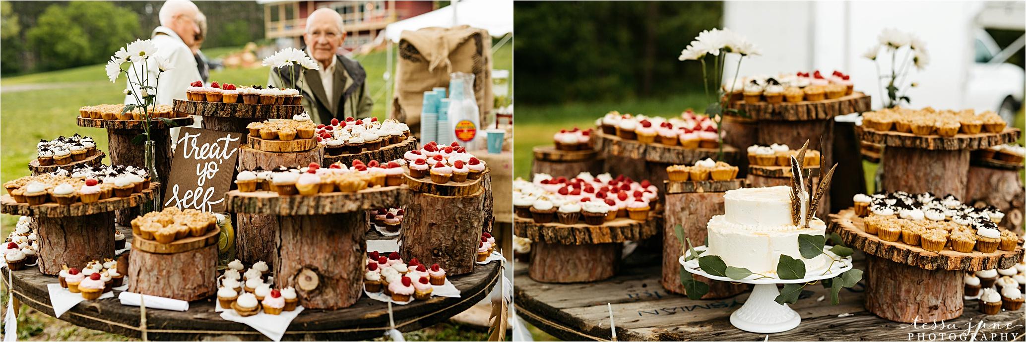 bohemian-forest-wedding-stillwater-minnesota-flower-crown-st-cloud-photographer-reception-cake-cupcakes