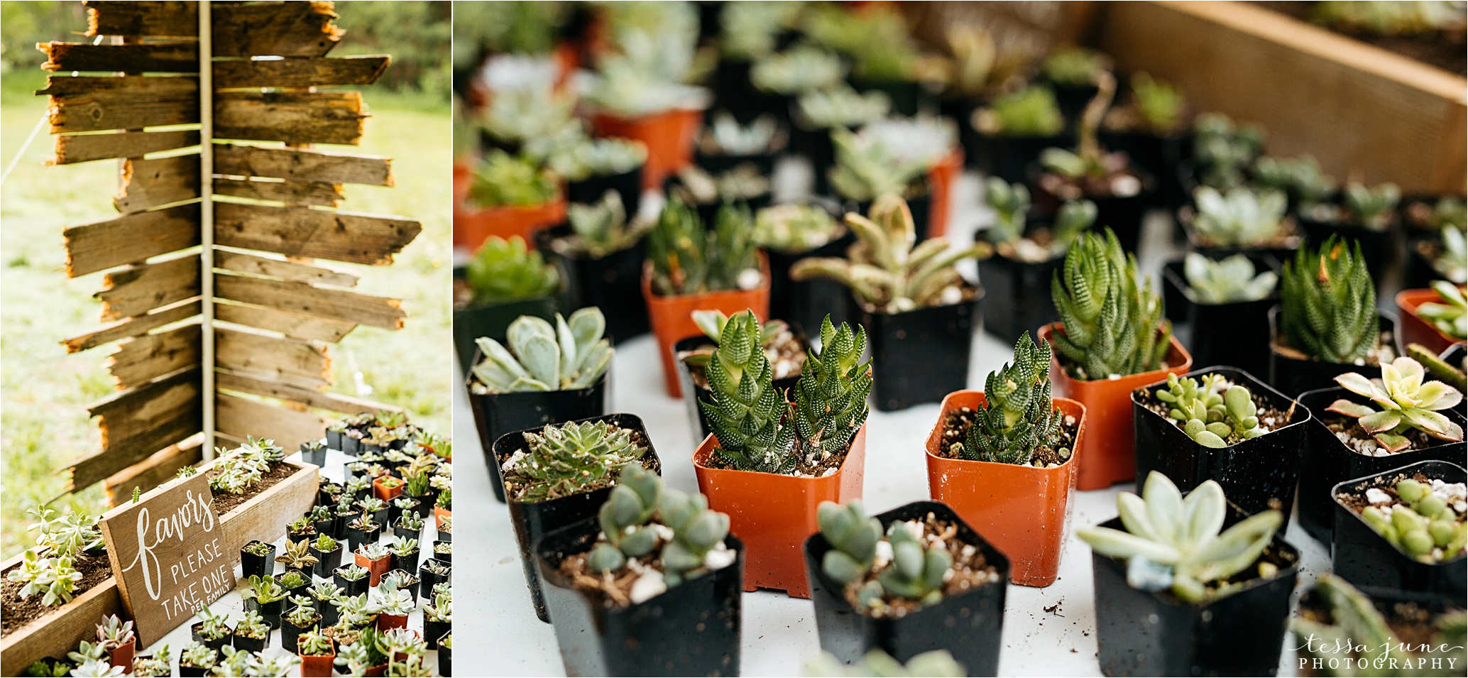 bohemian-forest-wedding-stillwater-minnesota-flower-crown-st-cloud-photographer-succulents-guest-party-favors