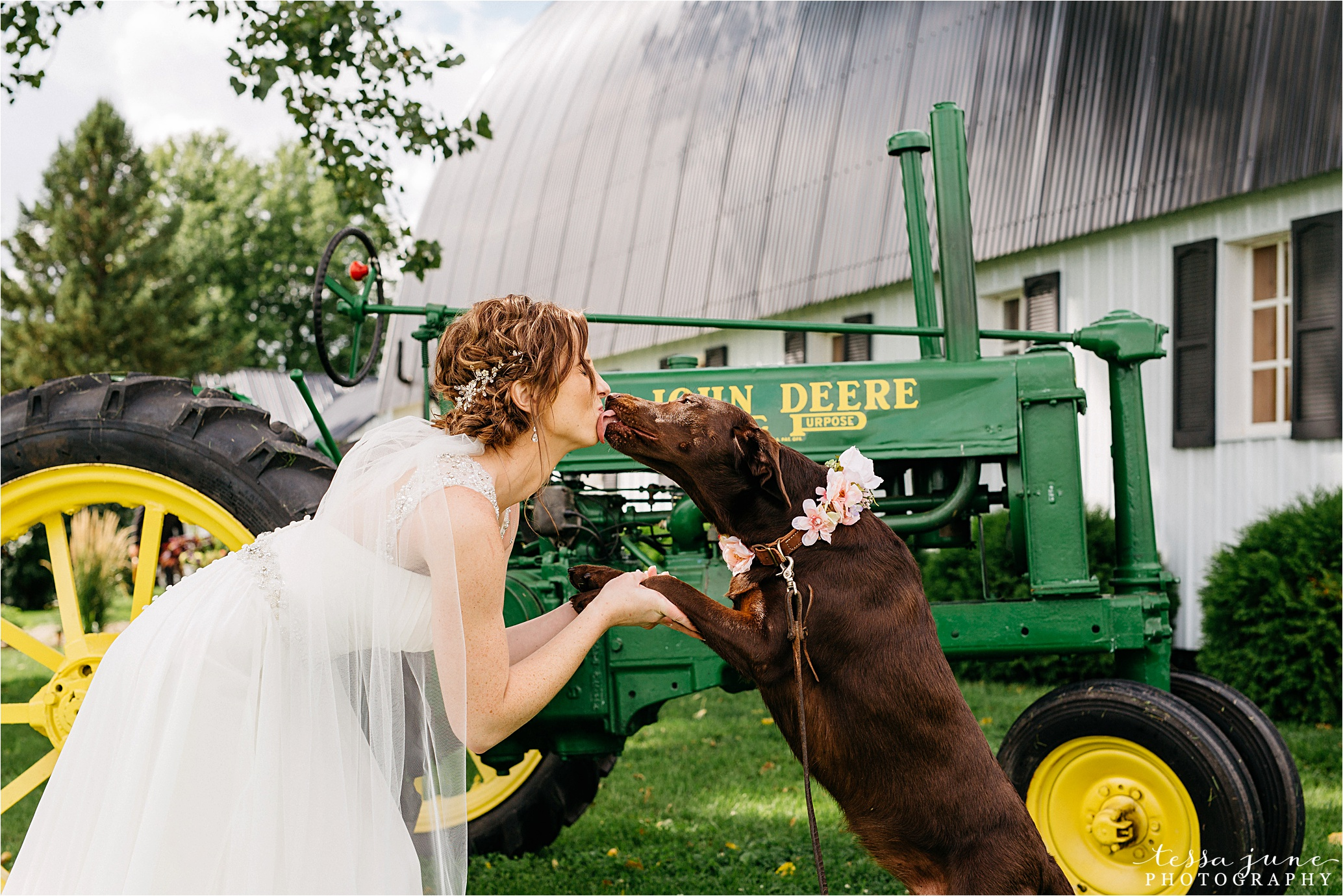 cadillac-ranch-wedding-maple-lake-st-cloud-wedding-photographer_0044.jpg
