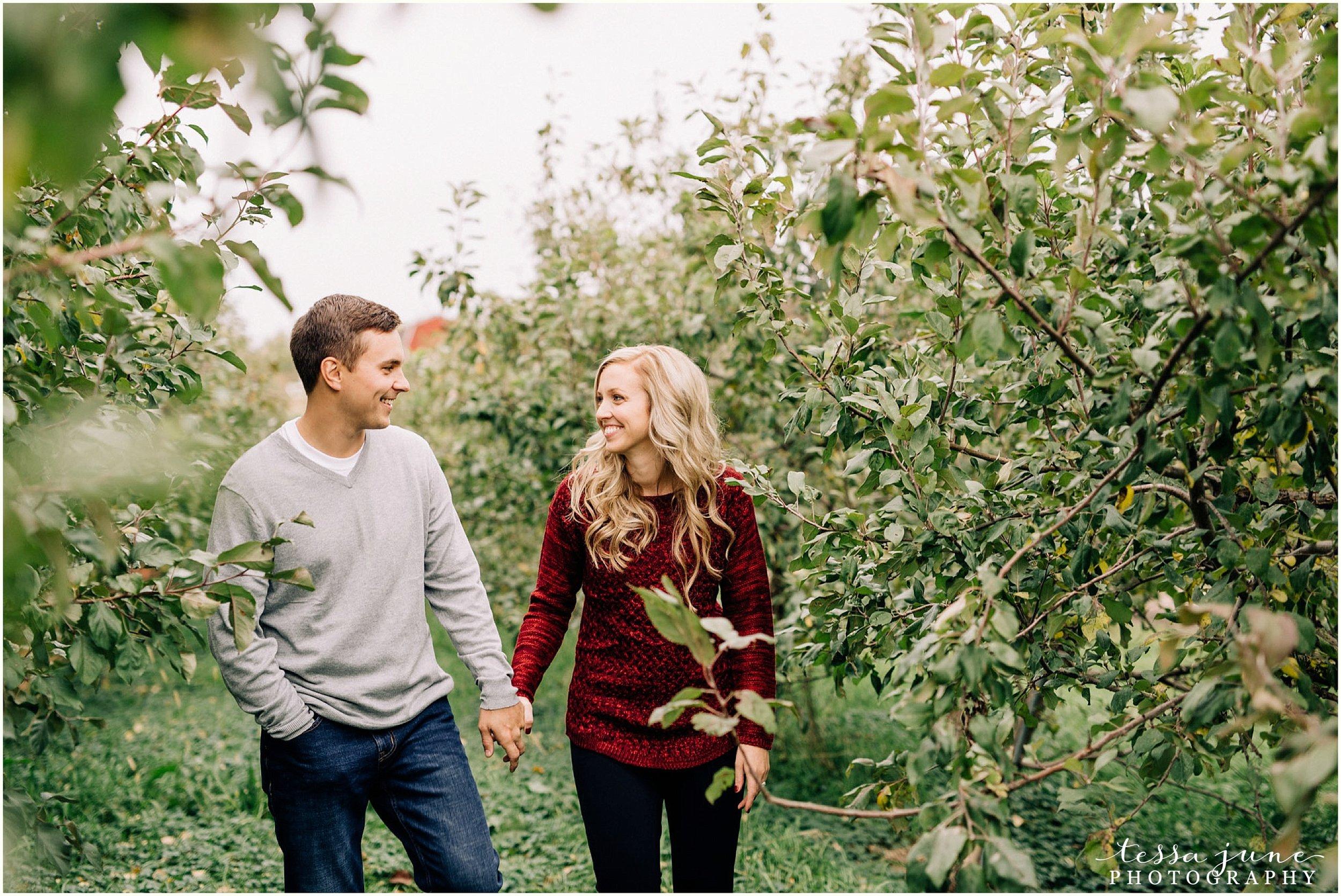 deer-lake-orchard-buffalo-minnesota-fall-engagement-st-cloud-photographer-8.jpg