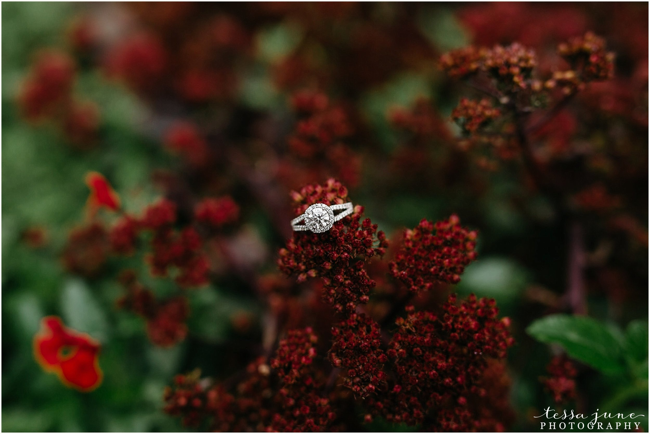 minnehaha-falls-engagement-st-cloud-photographer-24.jpg