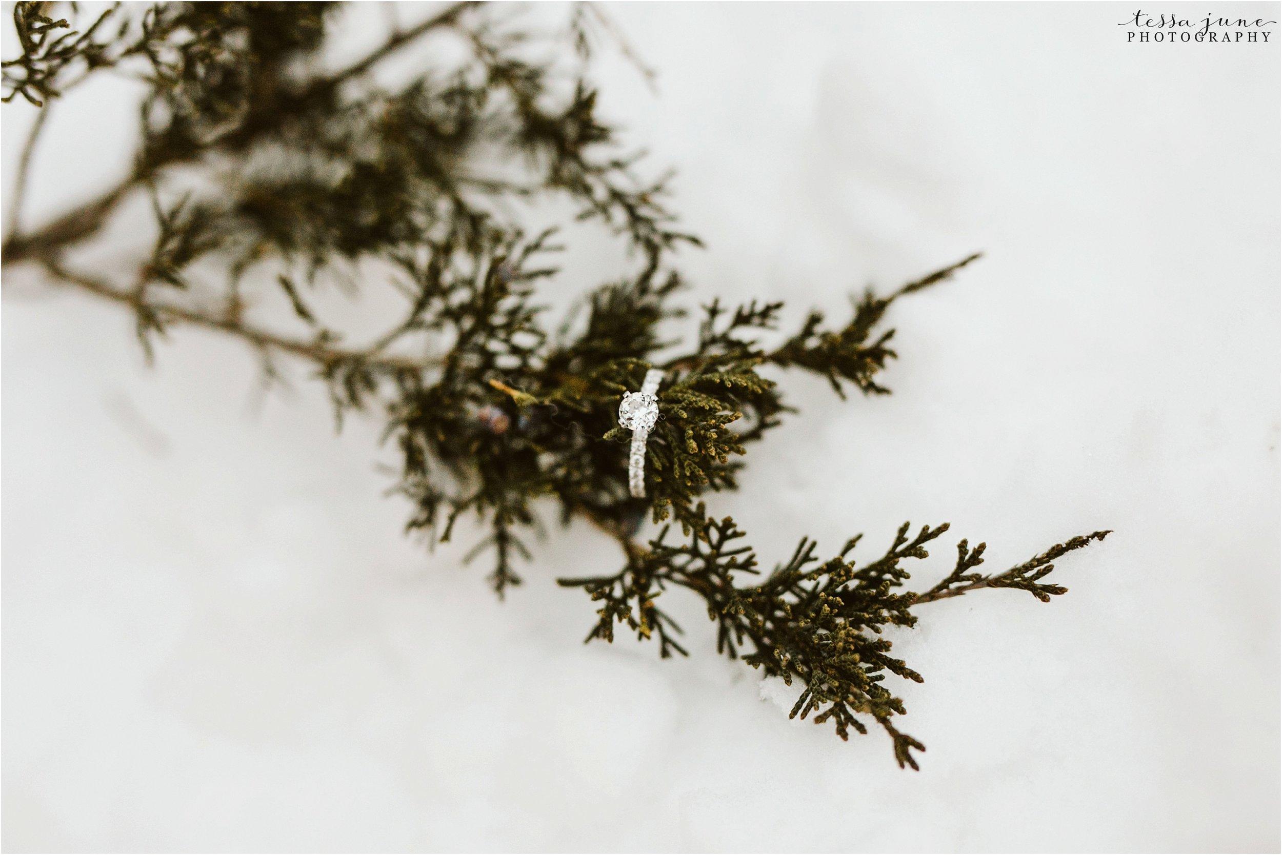taylors-falls-winter-engagement-session-st-cloud-photographer-33.jpg