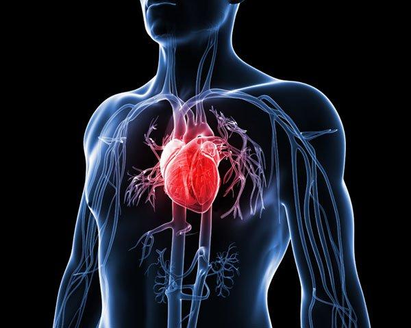 Heart Disease.jpg