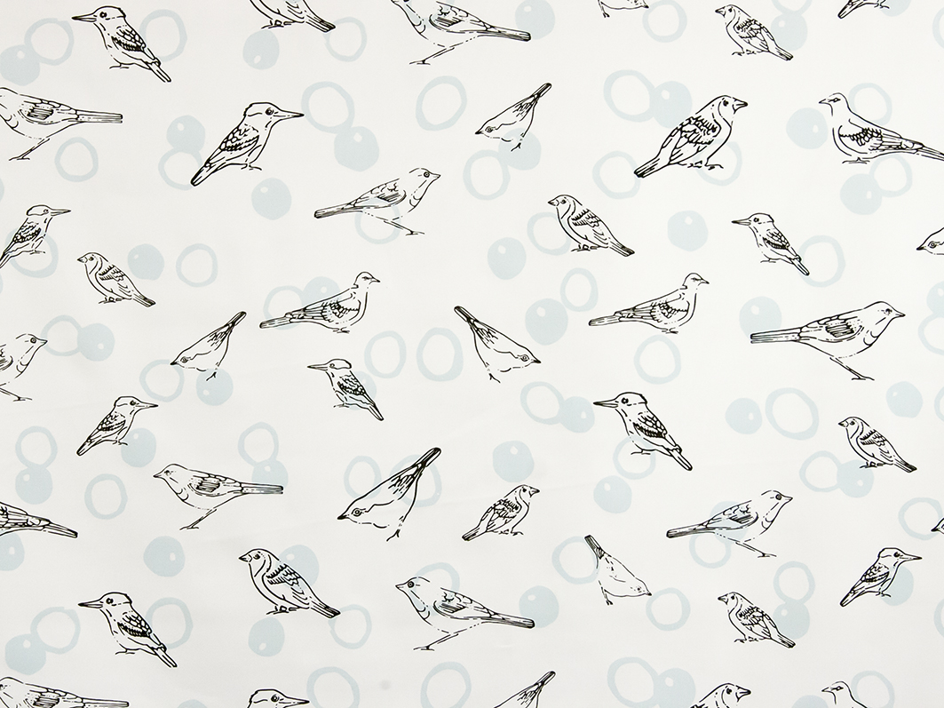 BIrds in Bubbles by Lisa Strachan