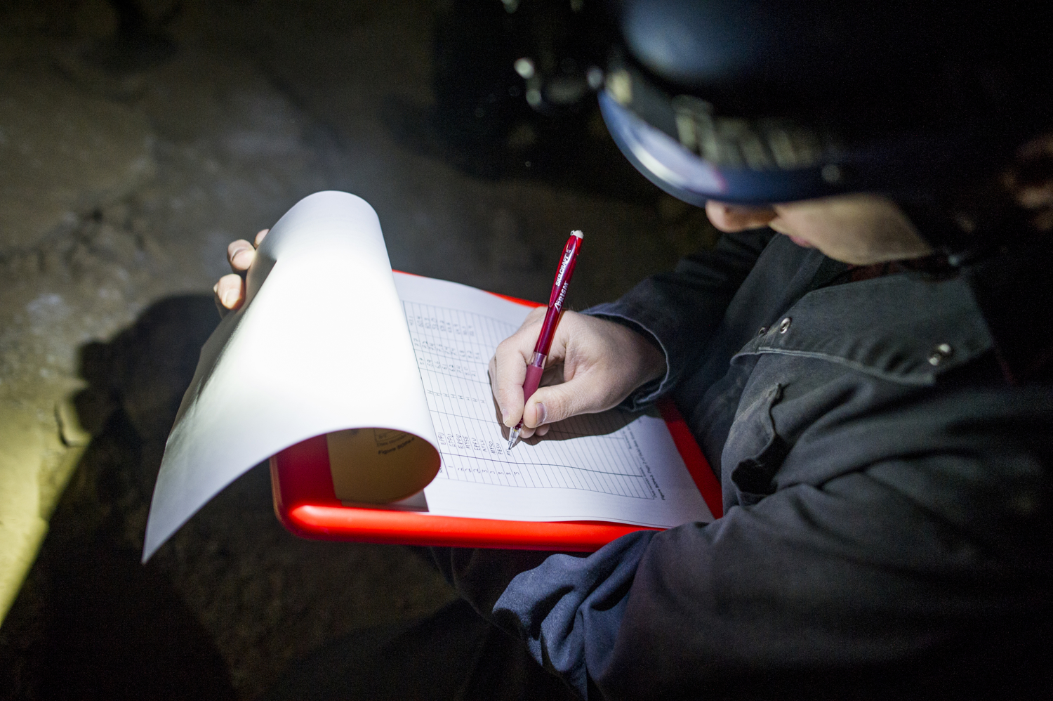 As Thomas calls out characteristics of each bat and its surroundings, a recorder writes down the data.
