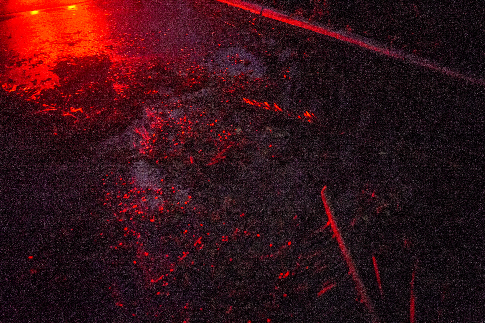 Tail lights reflect in the debris from the storm.