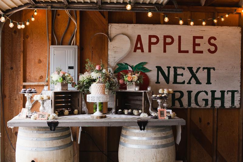 apple creek ranch wedding-1124