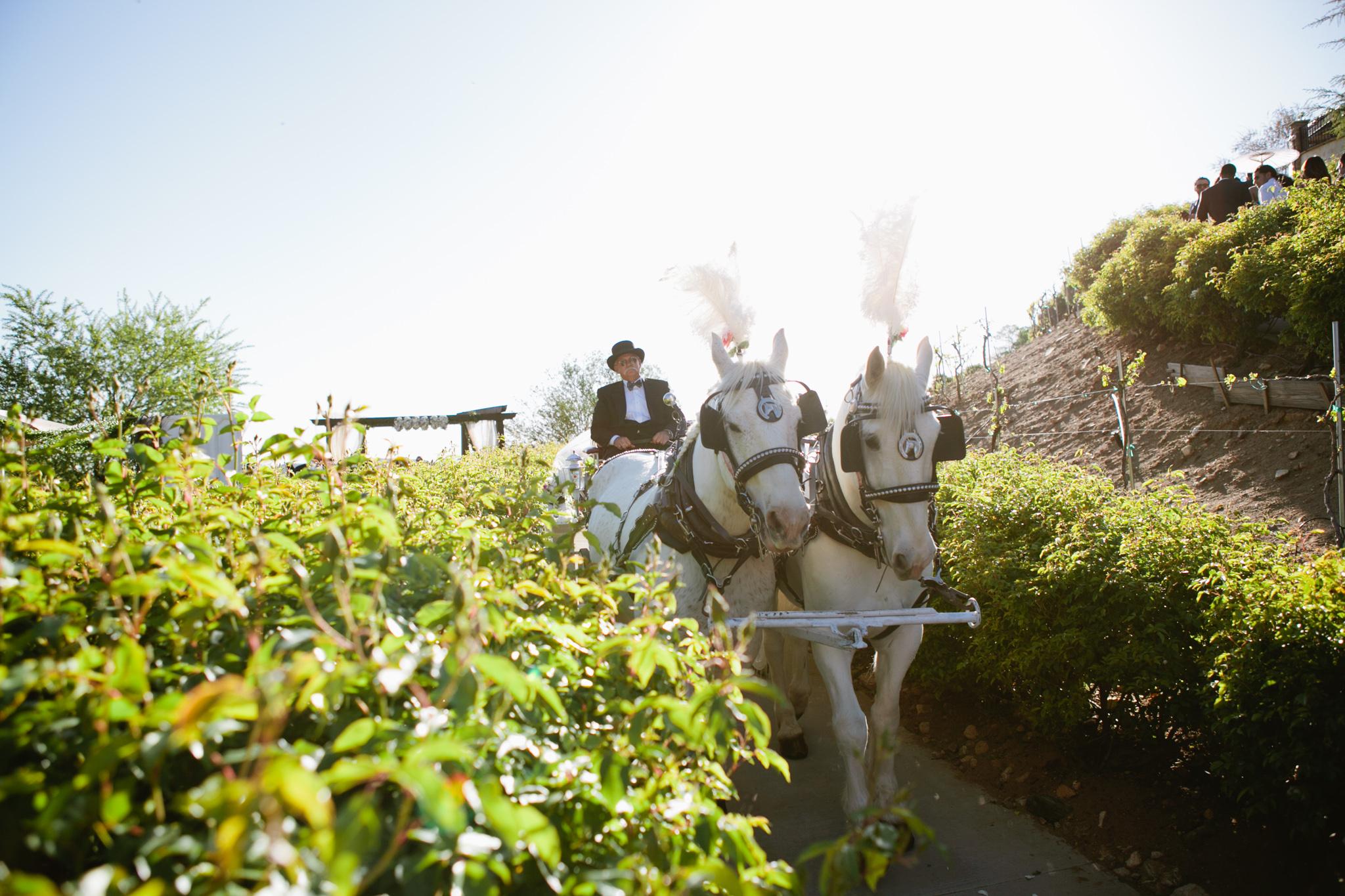 serendipity gardens wedding-131.jpg