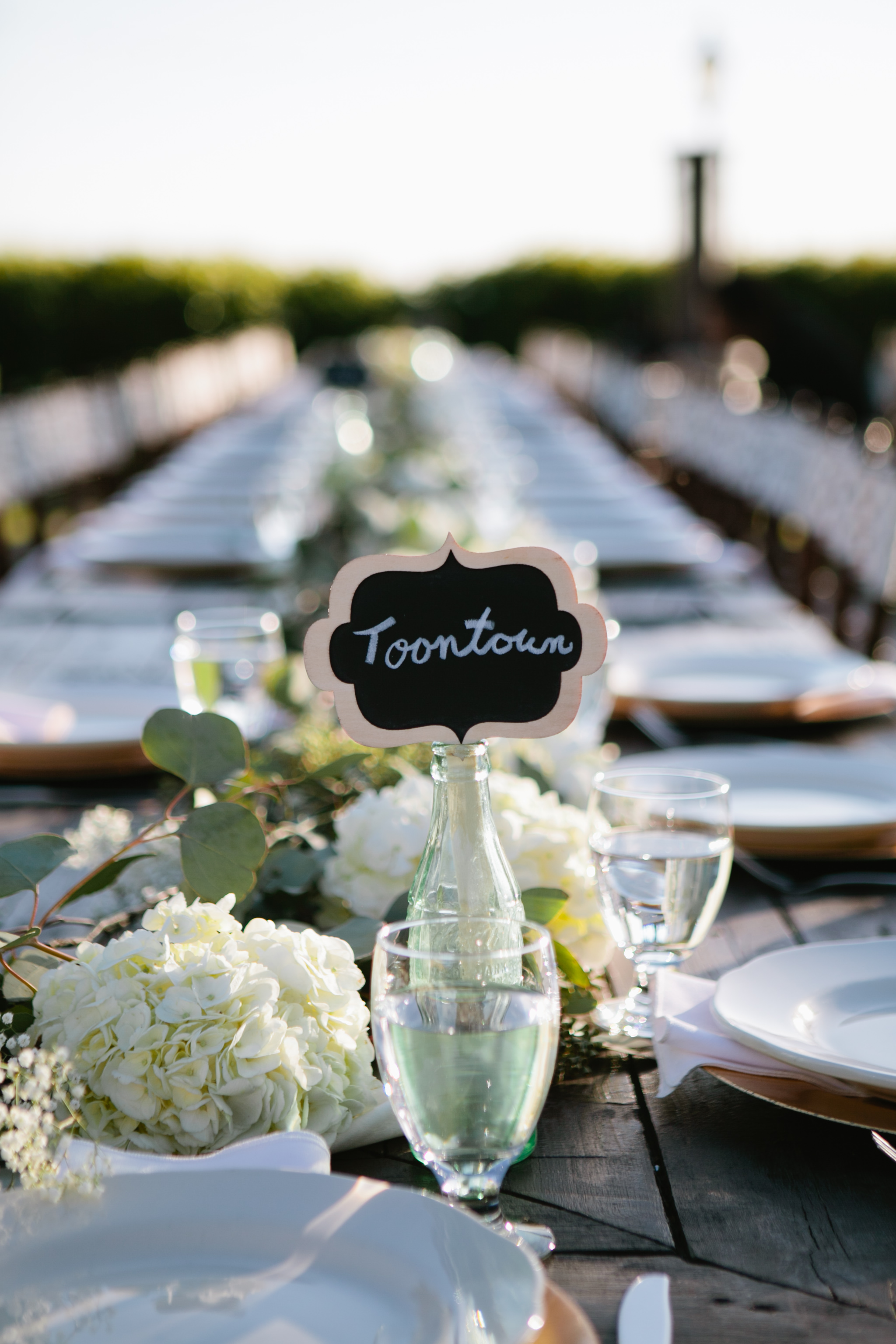 serendipity gardens wedding-141.jpg