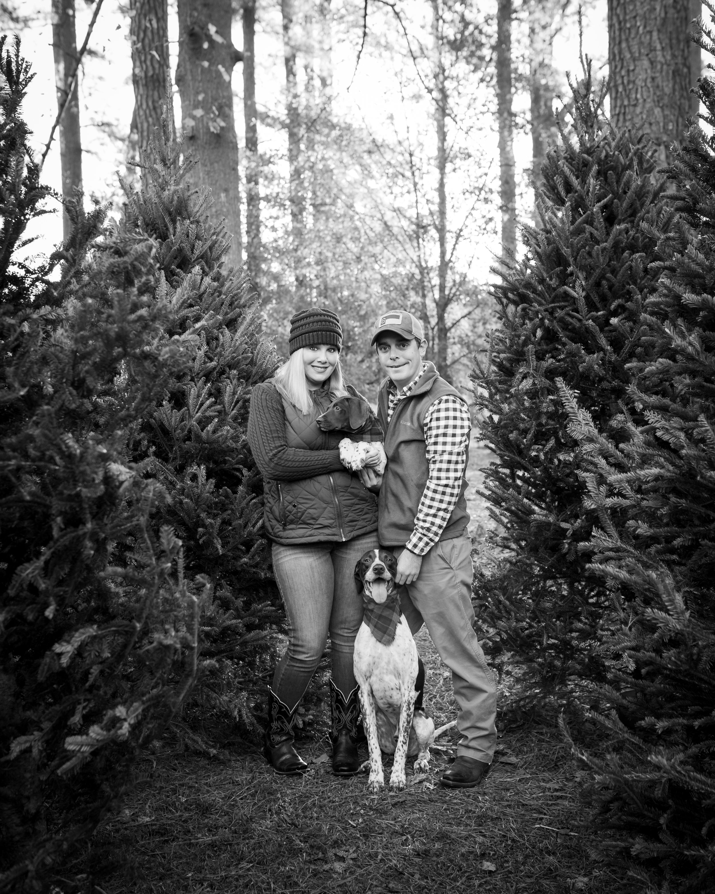 Nine19 Photography Raleigh NC Holiday Family Portrait Photographer-9108.jpg