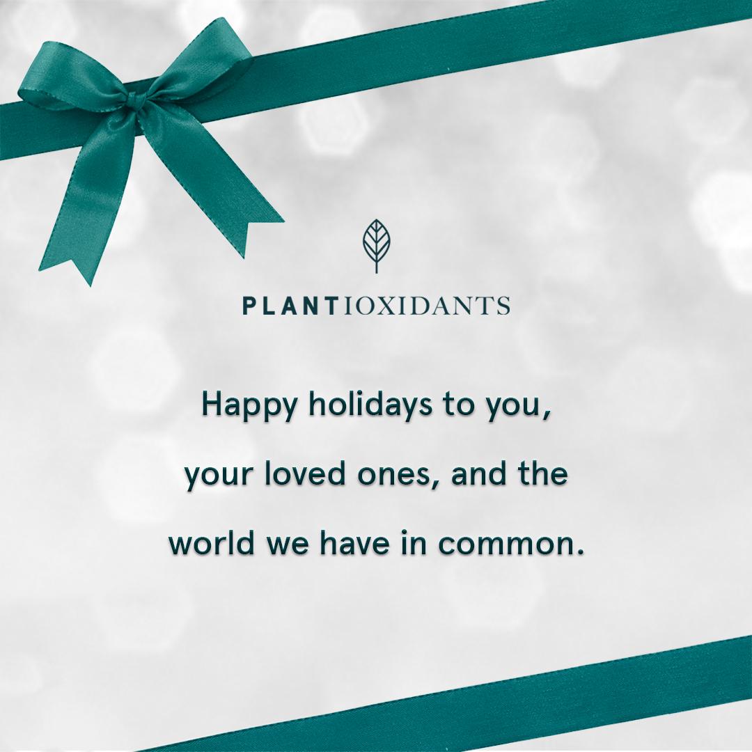 merry christmas-happy holidays.jpg