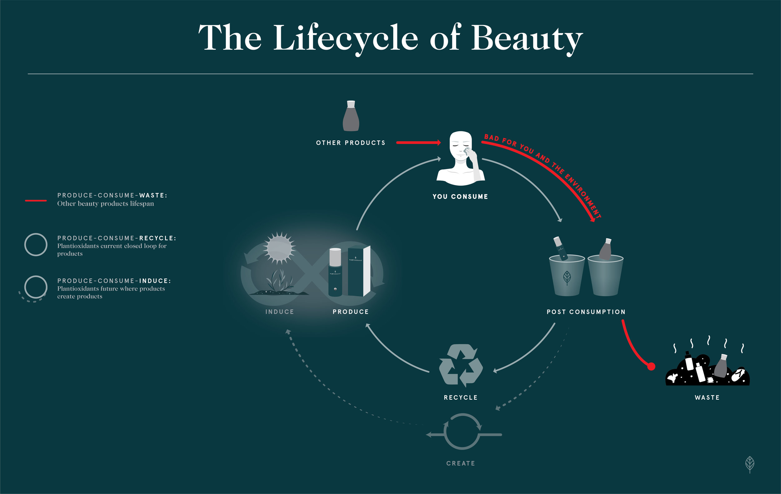 lifecycle of beauty-10-10.jpg