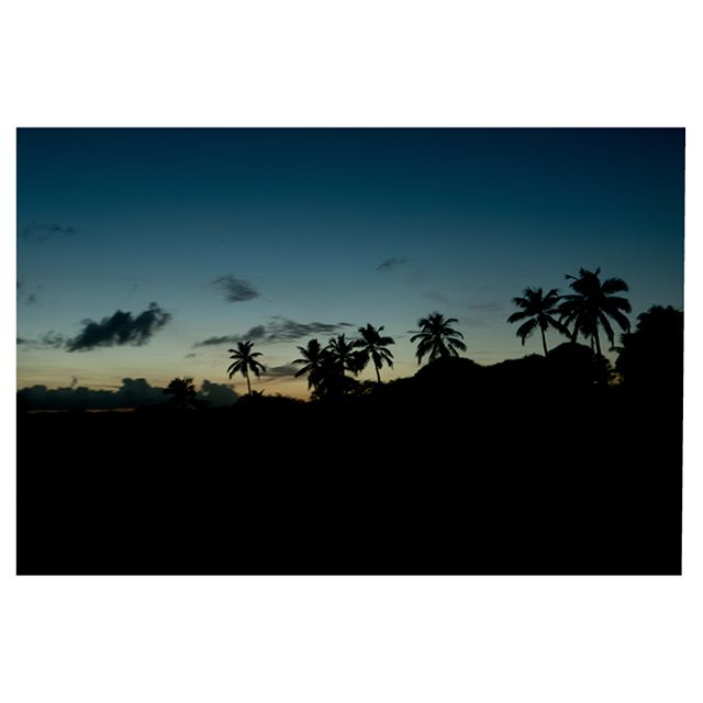 roadies #palmtrees  #leica #photography #photooftheday #worldcaptures #makeportraits #friendsandwalls #storyportrait #postmoreportraits #makeportraitsnotwar #chasinglight #justgoshoot #handsinframe #acertainslantoflight #makemoments #toldwithexposure #acolorstory #minimalhunter #welltravelled #justbackfrom #followmetoo #whatsinmybag #cntravelereats #passportexpress #passionpassport #dametraveler #outdoorlife #explore #vsco