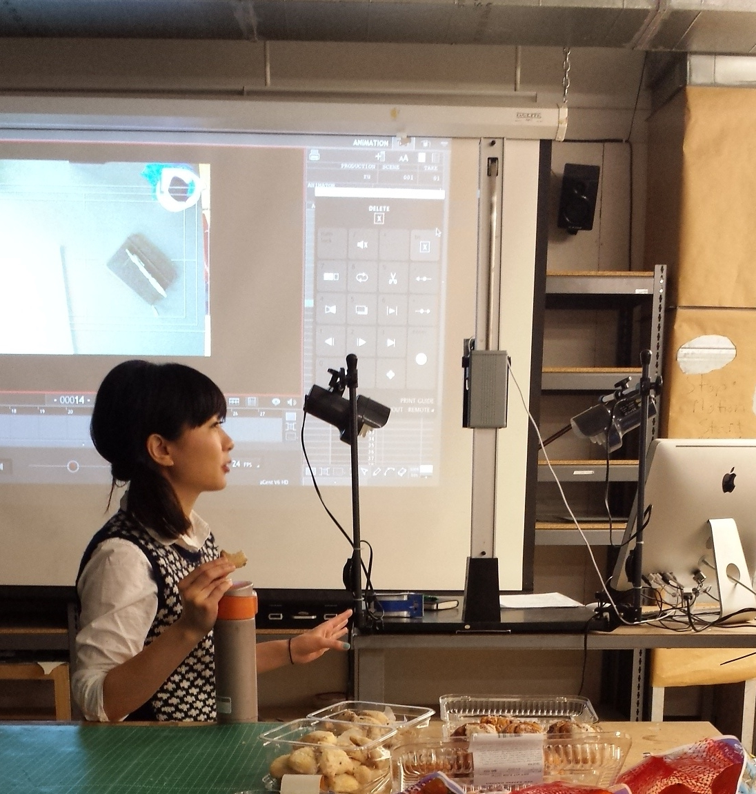Stop Motion Animation '15