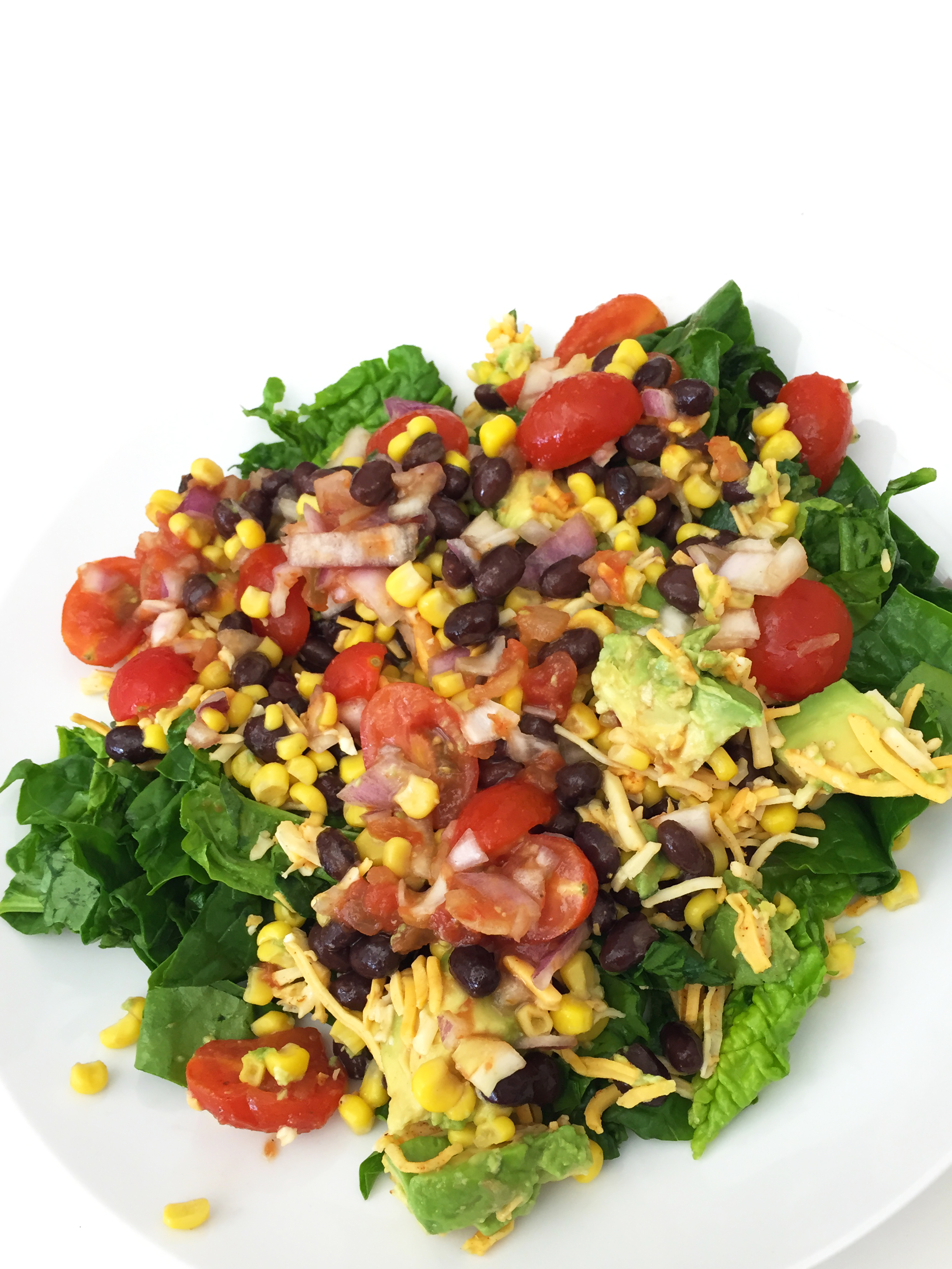 Salsa, tomatoes, red onion, corn, black beans, cheese, avocado, spinach