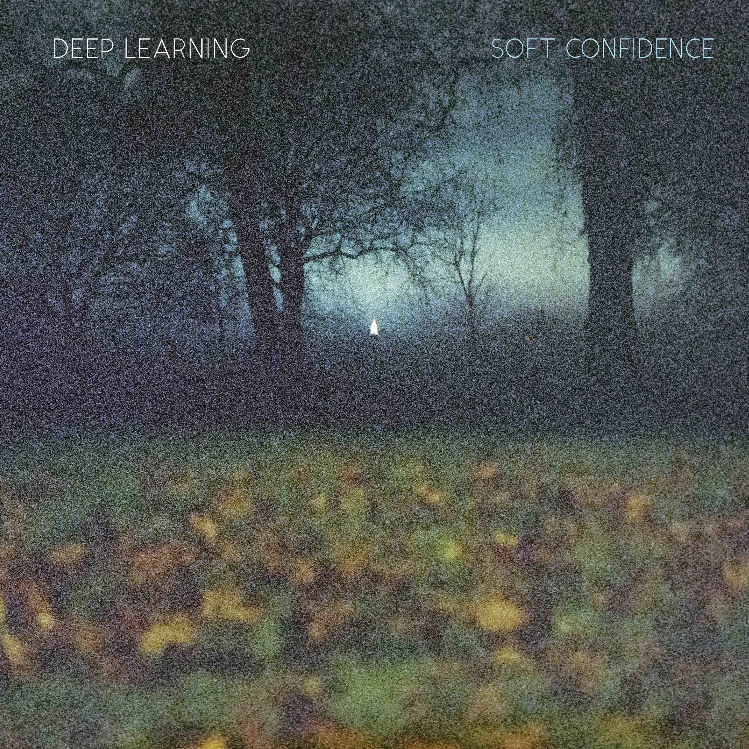 SU001-Deep Learning-Soft Confidence FrontCover.jpg
