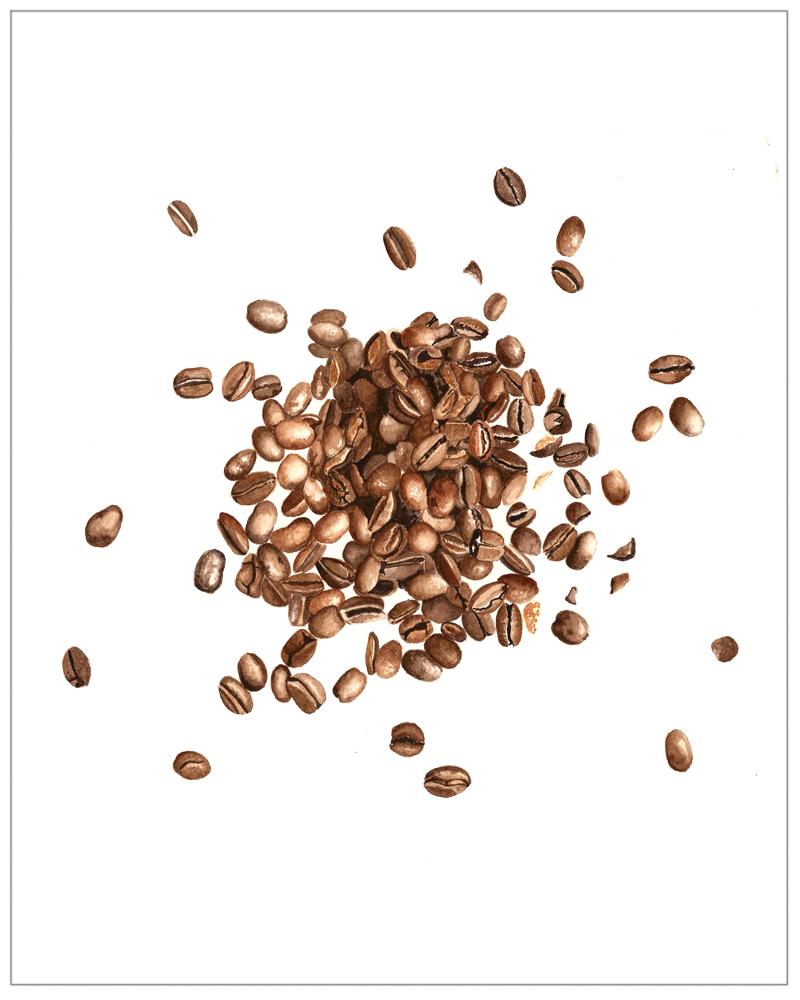 COFFEE BEANS | 2016