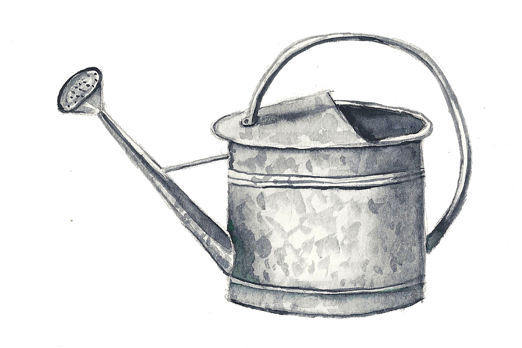 wateringcan.jpg
