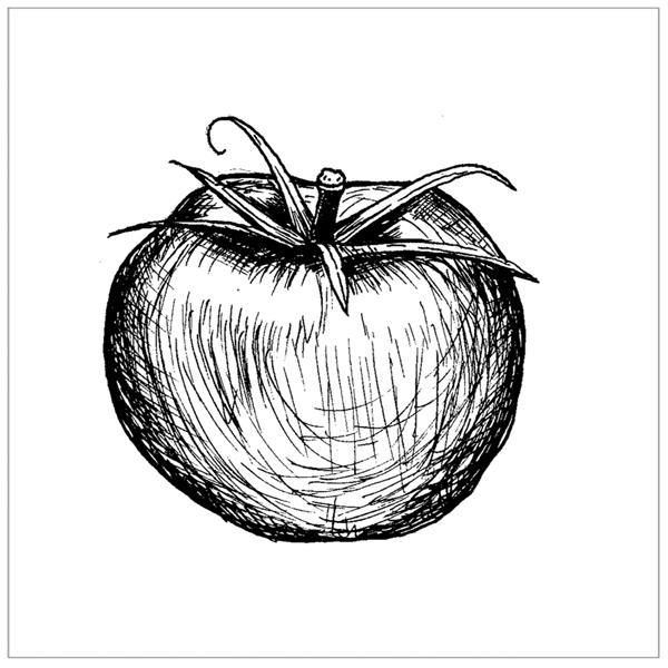 Tomato 2 PA.jpg
