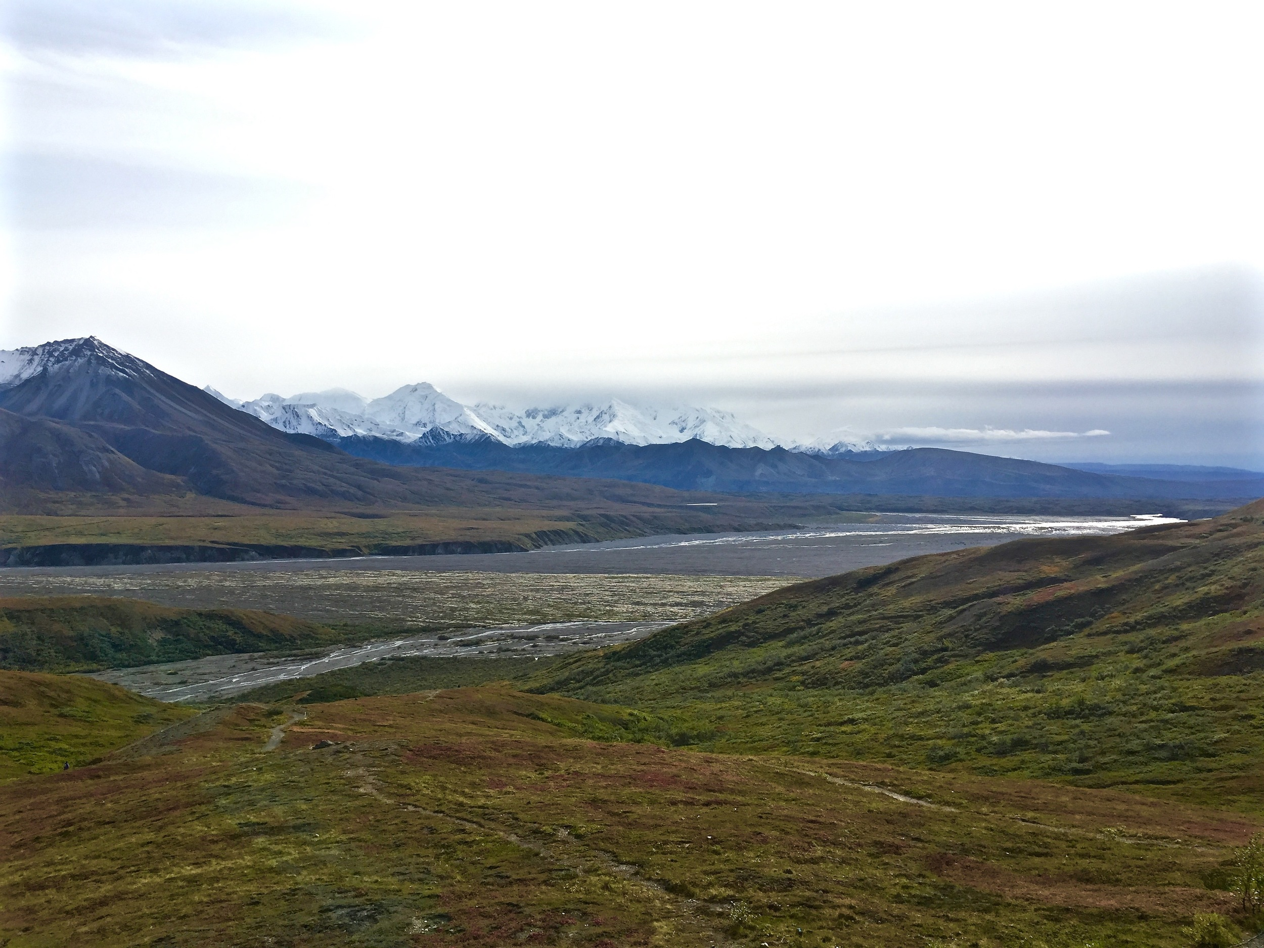 'The High One' is obscured by the clouds. This was taken from the Eielson visitor's center about half way down the Denali park road